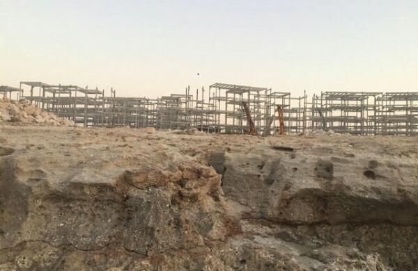 نامه انجمن های محیط زیستی استان بوشهر به دادستان کل کشور در خصوص اراضی متصرفی آریا ساسول