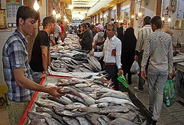 ماهی شیر به کیلویی ۲۰۰ هزار تومان رسید!